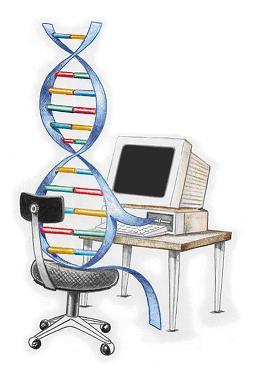 Image result for الگوریتم های ژنتیک